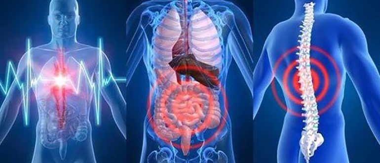 Наш организм и его сигналы