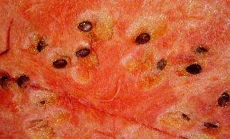 Польза арбузных семечек для организма человека